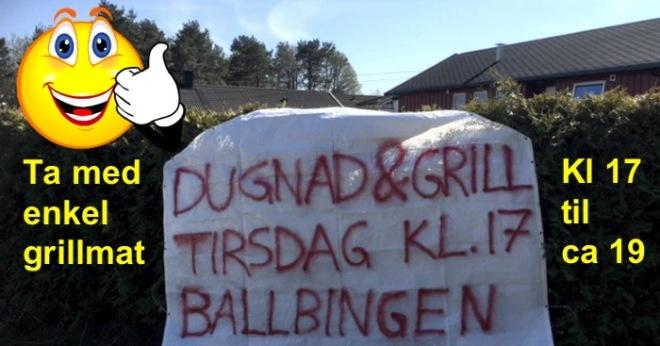 dugnad-med-grill